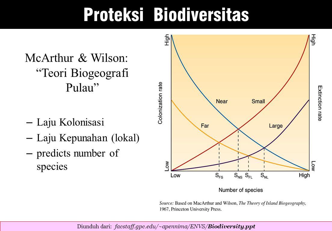 McArthur & Wilson: Teori Biogeografi Pulau – Laju Kolonisasi – Laju Kepunahan (lokal) – predicts number of species Diunduh dari: facstaff.gpc.edu/~apennima/ENVS/Biodiversity.ppt  Proteksi Biodiversitas
