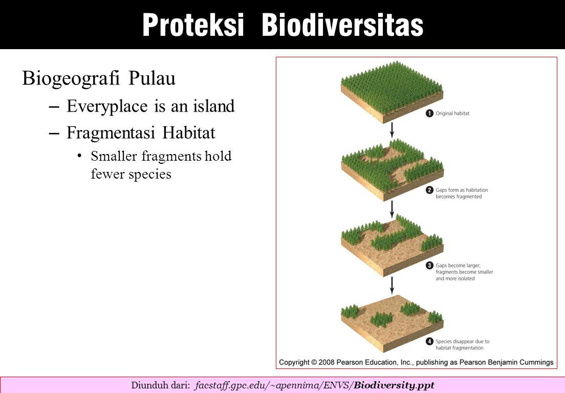 Biogeografi Pulau – Everyplace is an island – Fragmentasi Habitat Smaller fragments hold fewer species Diunduh dari: facstaff.gpc.edu/~apennima/ENVS/Biodiversity.ppt  Proteksi Biodiversitas