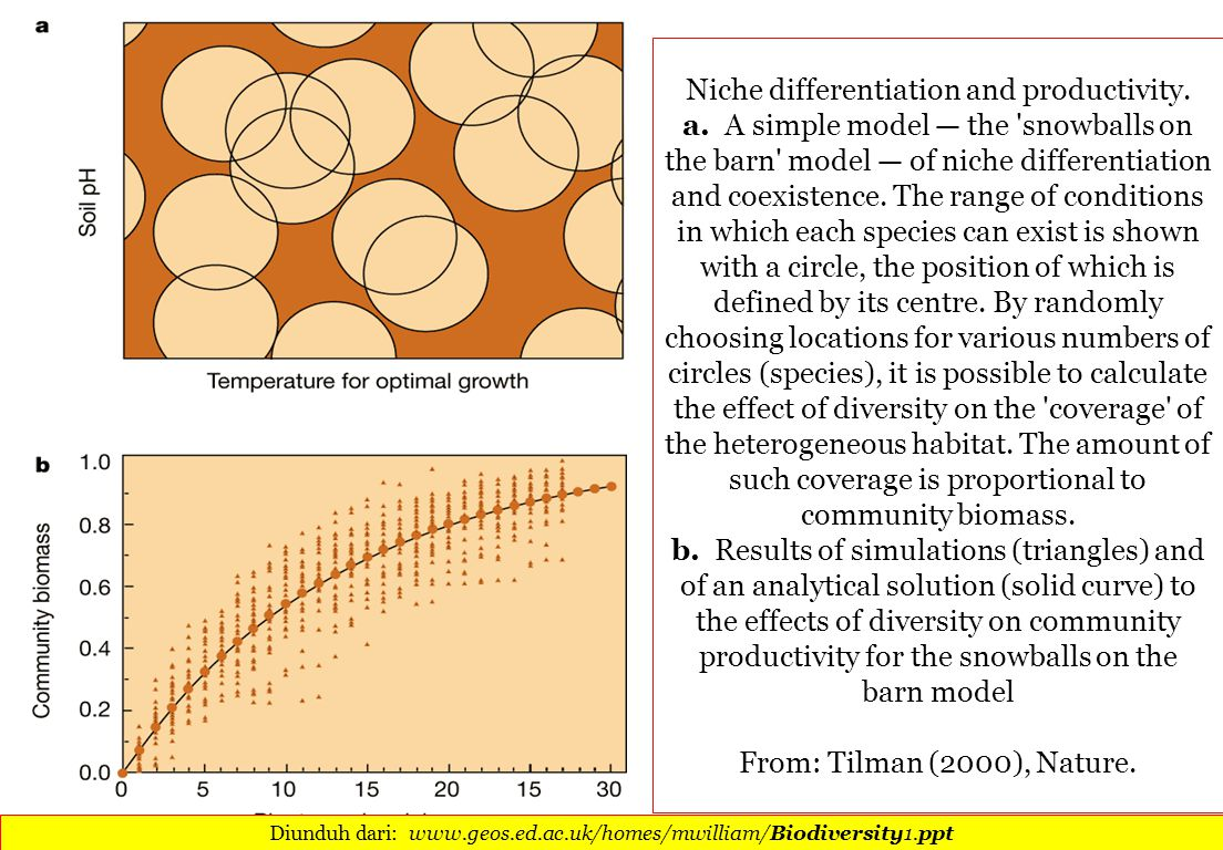 Niche differentiation and productivity. a.