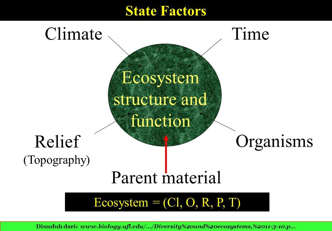 Climate Relief (Topography) Parent material Time Organisms Ecosystem structure and function State Factors Ecosystem = (Cl, O, R, P, T) Diunduh dari: www.biology.ufl.edu/.../Diversity%20and%20ecosystems,%2011-3-10.p...