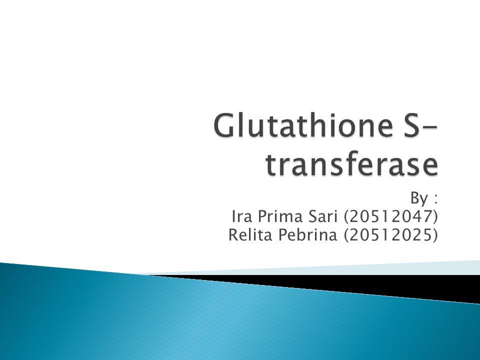  Glutathione (GSH) adalah tripeptida dengan ikatan gamma peptide antara gugus amina dari sistein (yang terikat oleh ikatan peptide pada glisin) dan karboksil dari rantai samping asam glutamate  GSH merupakan antioksidan yang mencegah kerusakan komponen sel penting yang disebabkan oleh spesies oksigen reaktif seperti radikal bebas dan peroksida  Reaksi konjugasi dan pengurangan reaksi glutathione dikatalisis oleh enzim Glutathione S- transferase (GSTs) dalam sitosol, mikrosom dan mitokondria.