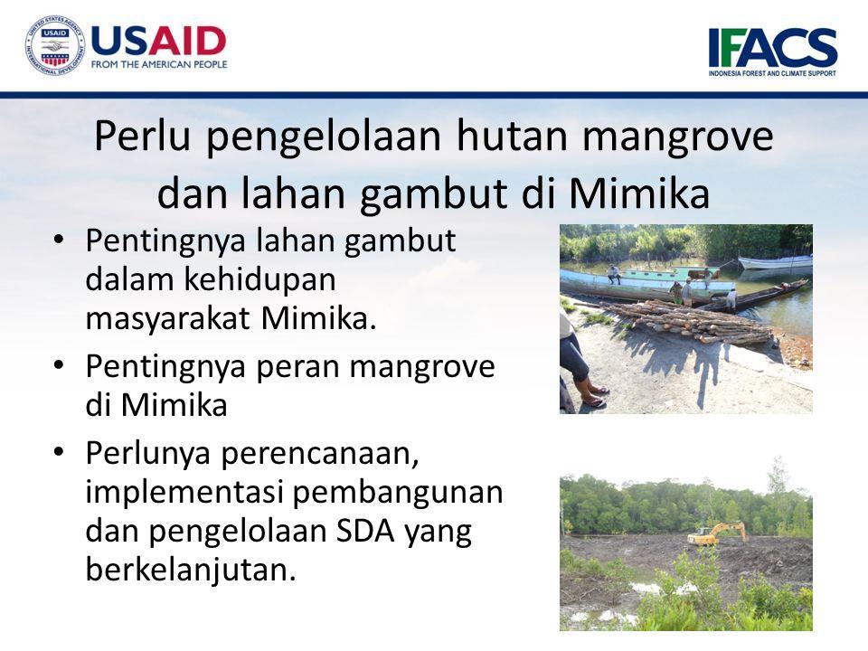 Perlu pengelolaan hutan mangrove dan lahan gambut di Mimika Pentingnya lahan gambut dalam kehidupan masyarakat Mimika.