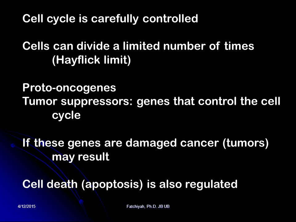 4/12/2015Fatchiyah, Ph.D. JB UB Cell cycle is carefully controlled Cells can divide a limited number of times (Hayflick limit) Proto-oncogenes Tumor s