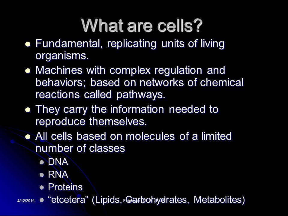 4/12/2015Fatchiyah, Ph.D.JB UB What are cells. Fundamental, replicating units of living organisms.