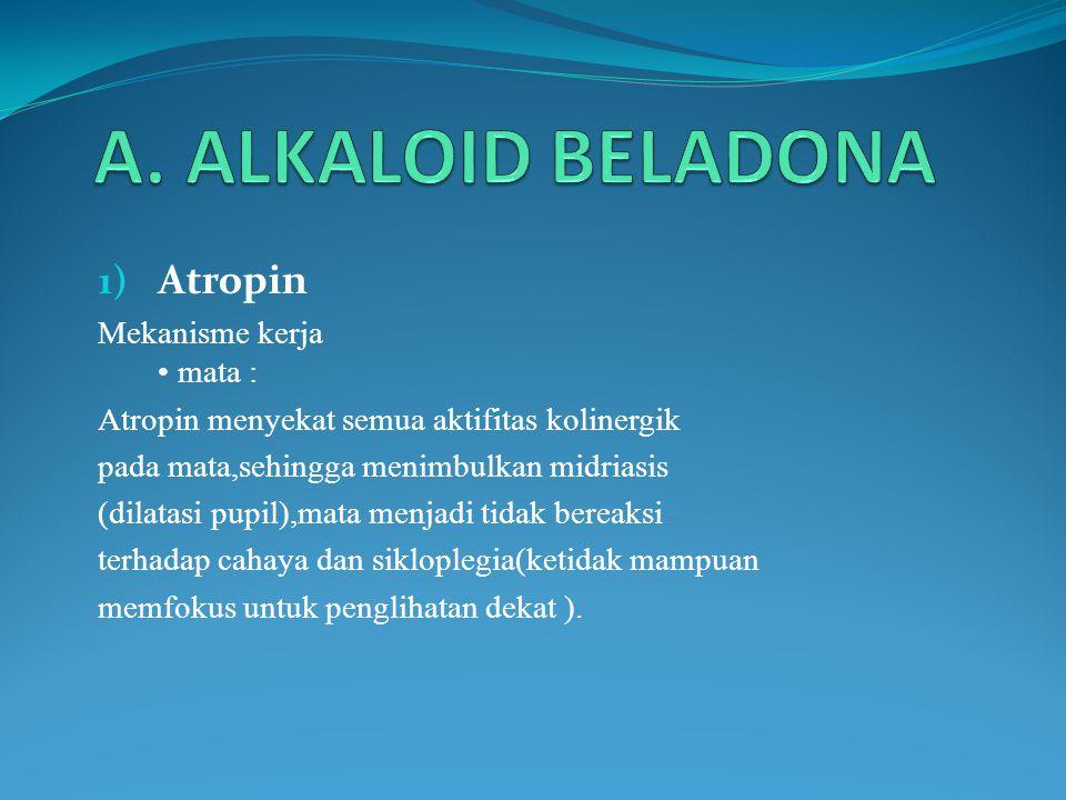 Gastrointestinal: Atropin digunakan sebagai obat antipasmodik untuk mengurangi aktivitas saluran cerna.atropin dan psikopolamin merupakan obat terkuat sebagaipenghambat salurancerna.walaupun motilitas (gerakan usus) dikurangi,tetapiproduksi asam hidroklorat tidak jelas berpengaruh.oleh karena itu obat ini tidak efektif untuk mempercepat penyembuhan ulkus peptikum.