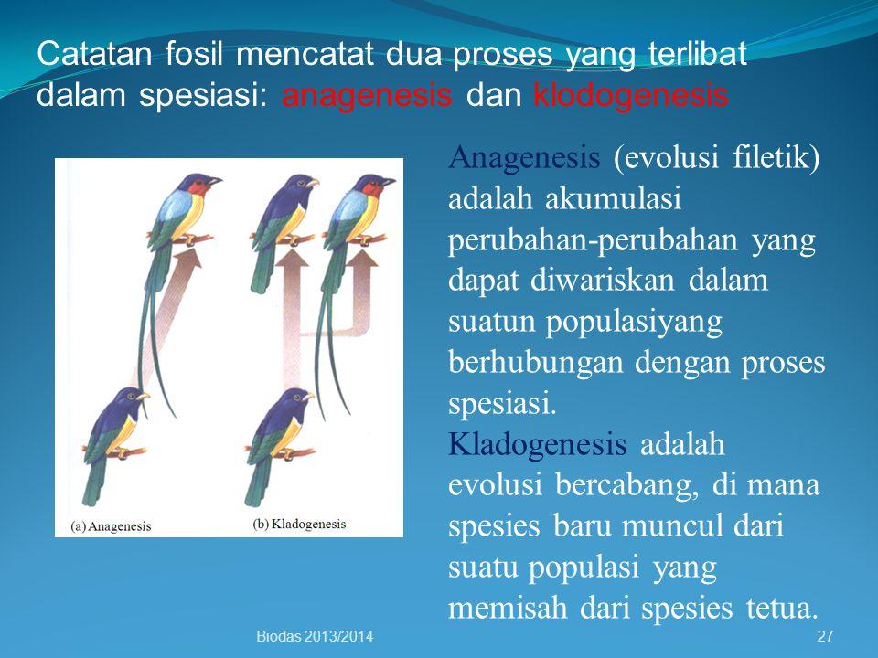 Catatan fosil mencatat dua proses yang terlibat dalam spesiasi: anagenesis dan klodogenesis Anagenesis (evolusi filetik) adalah akumulasi perubahan-pe