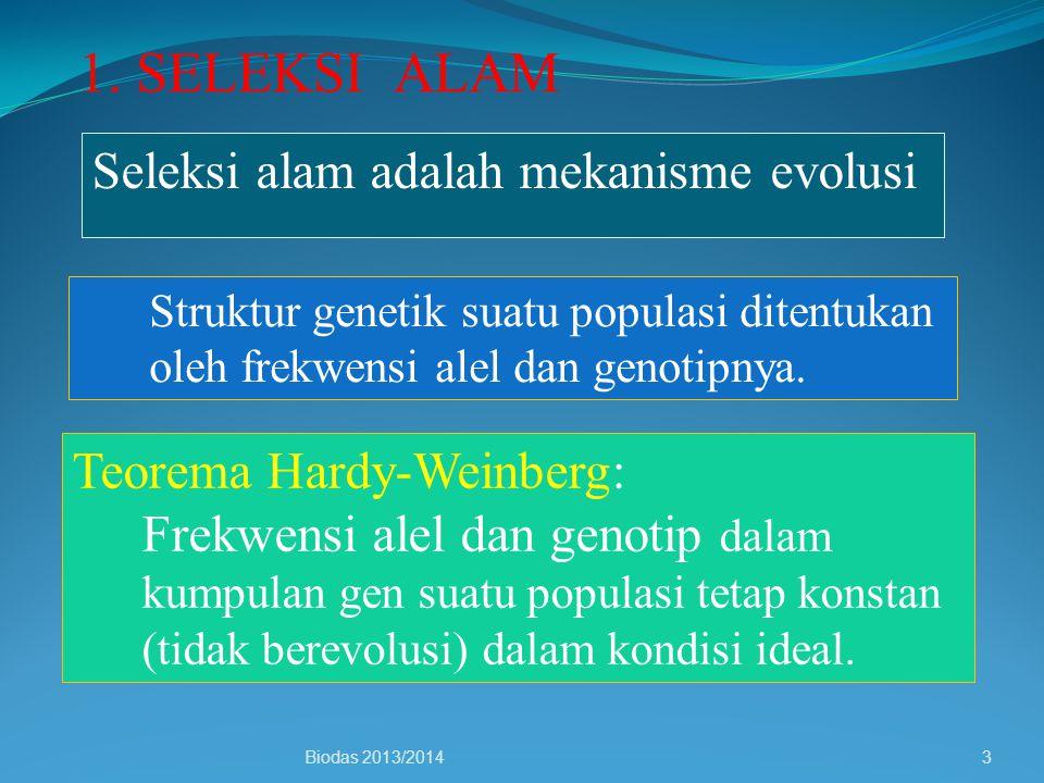 Seleksi alam adalah mekanisme evolusi Struktur genetik suatu populasi ditentukan oleh frekwensi alel dan genotipnya. Teorema Hardy-Weinberg: Frekwensi
