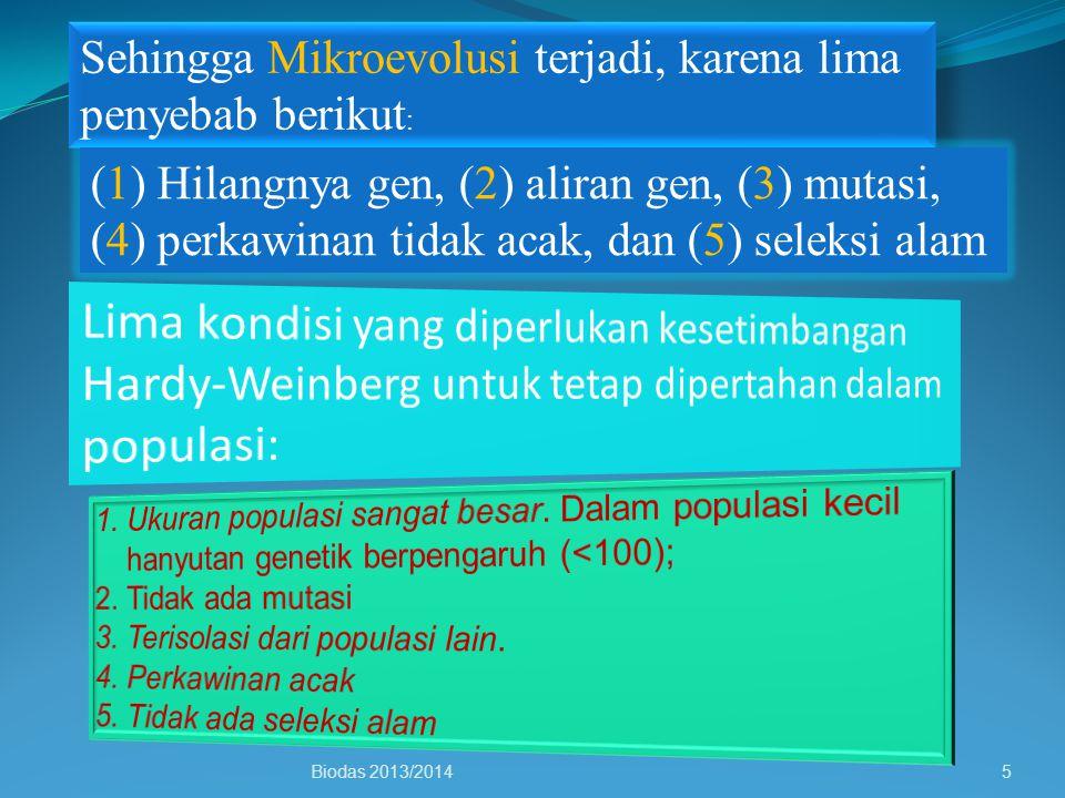Sehingga Mikroevolusi terjadi, karena lima penyebab berikut : (1) Hilangnya gen, (2) aliran gen, (3) mutasi, (4) perkawinan tidak acak, dan (5) seleks