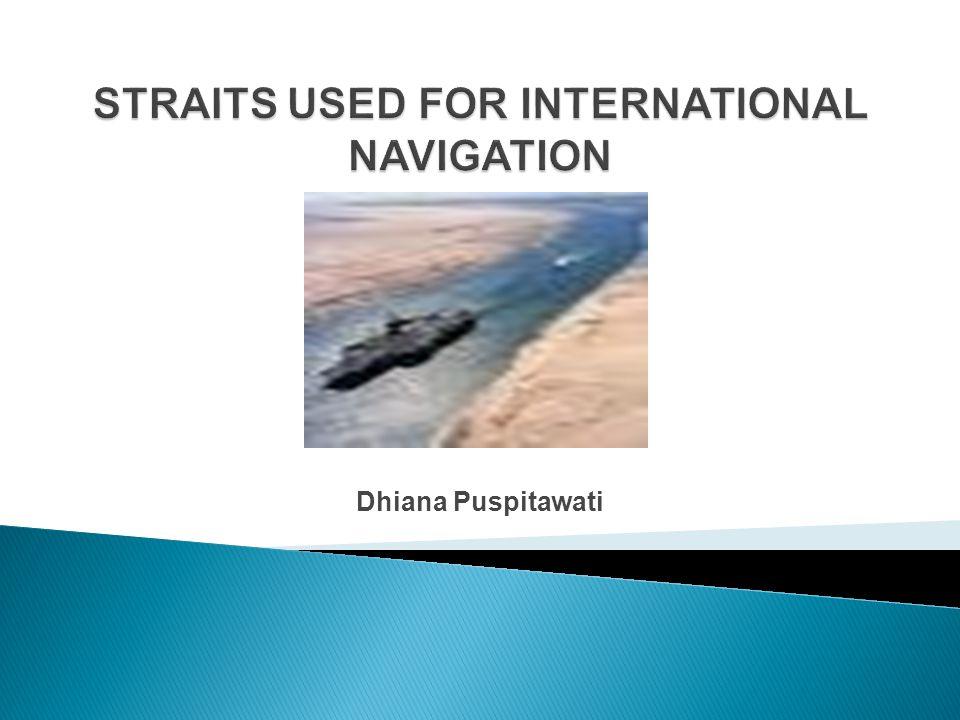Dhiana Puspitawati