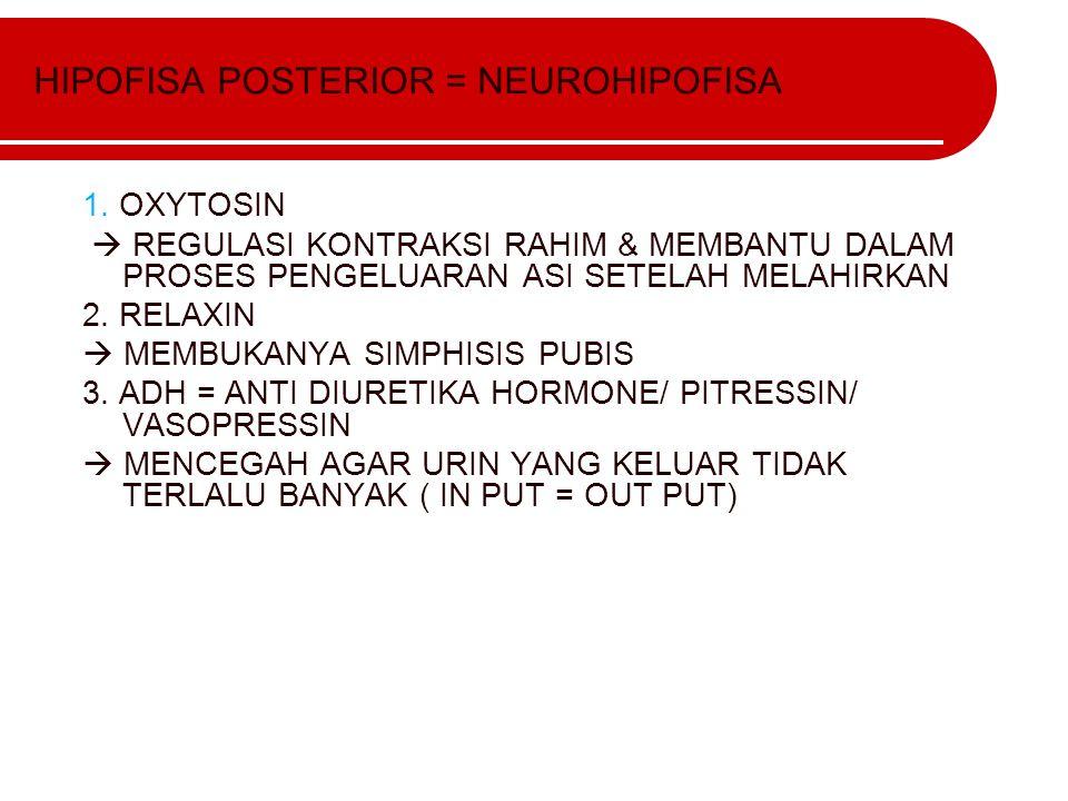 HIPOFISA POSTERIOR = NEUROHIPOFISA 1. OXYTOSIN  REGULASI KONTRAKSI RAHIM & MEMBANTU DALAM PROSES PENGELUARAN ASI SETELAH MELAHIRKAN 2. RELAXIN  MEMB