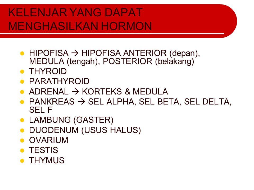 KELENJAR YANG DAPAT MENGHASILKAN HORMON HIPOFISA  HIPOFISA ANTERIOR (depan), MEDULA (tengah), POSTERIOR (belakang) THYROID PARATHYROID ADRENAL  KORT