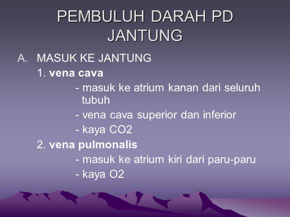 PEMBULUH DARAH PD JANTUNG A.MASUK KE JANTUNG 1.