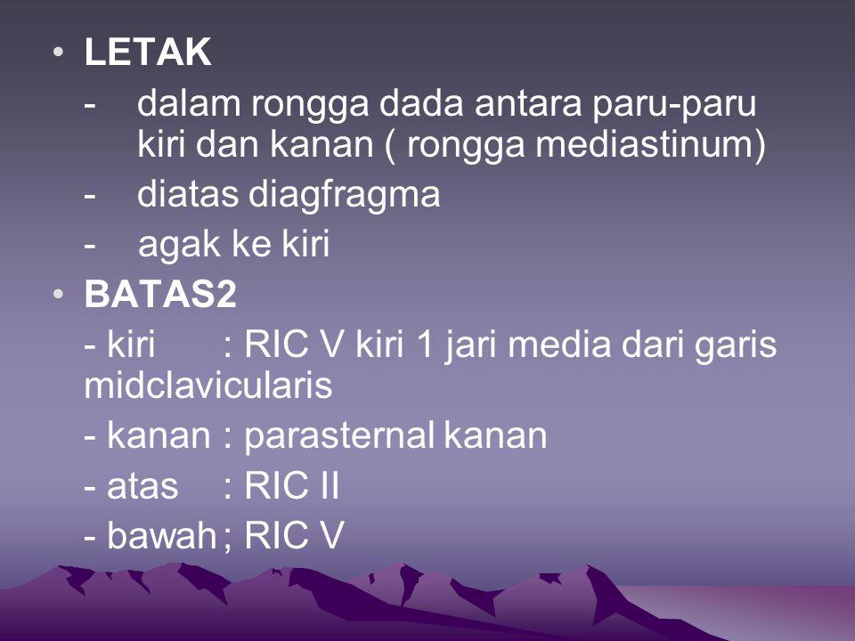 LETAK - dalam rongga dada antara paru-paru kiri dan kanan ( rongga mediastinum) - diatas diagfragma - agak ke kiri BATAS2 - kiri: RIC V kiri 1 jari media dari garis midclavicularis - kanan: parasternal kanan - atas: RIC II - bawah; RIC V