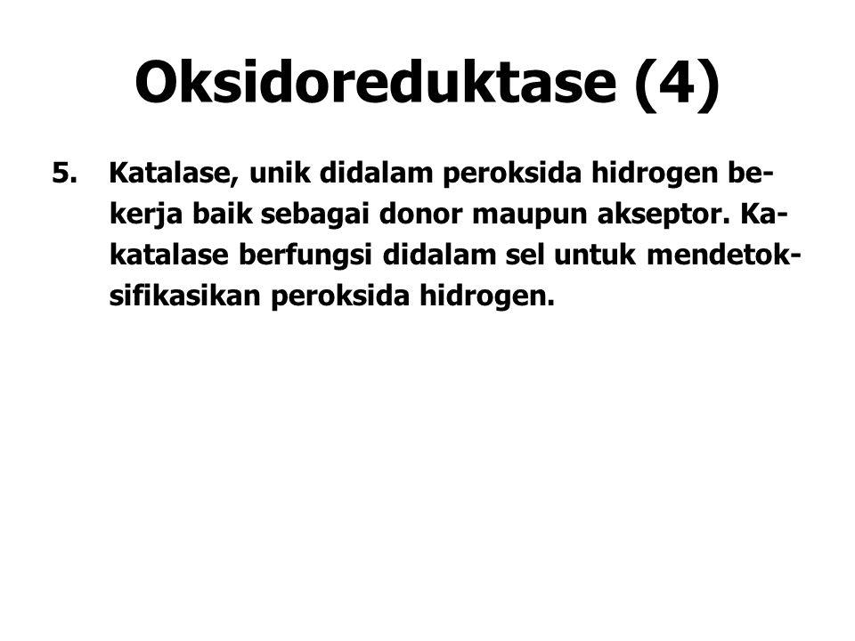 Oksidoreduktase (4) 5.Katalase, unik didalam peroksida hidrogen be- kerja baik sebagai donor maupun akseptor. Ka- katalase berfungsi didalam sel untuk