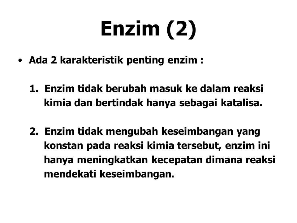 Enzim (2) Ada 2 karakteristik penting enzim : 1. Enzim tidak berubah masuk ke dalam reaksi kimia dan bertindak hanya sebagai katalisa. 2. Enzim tidak