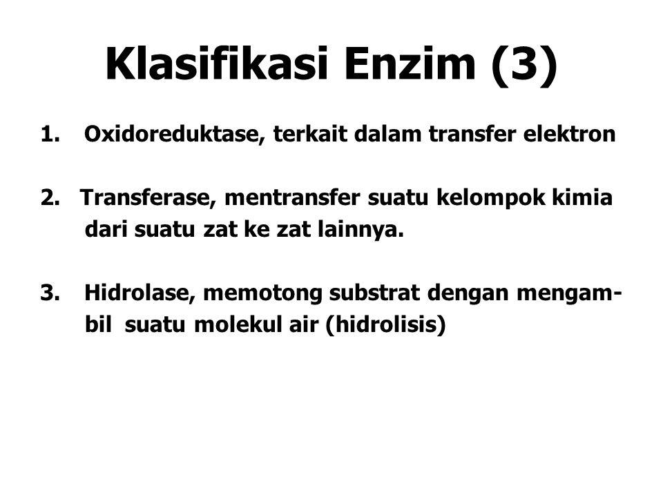 Klasifikasi Enzim (3) 1.Oxidoreduktase, terkait dalam transfer elektron 2. Transferase, mentransfer suatu kelompok kimia dari suatu zat ke zat lainnya