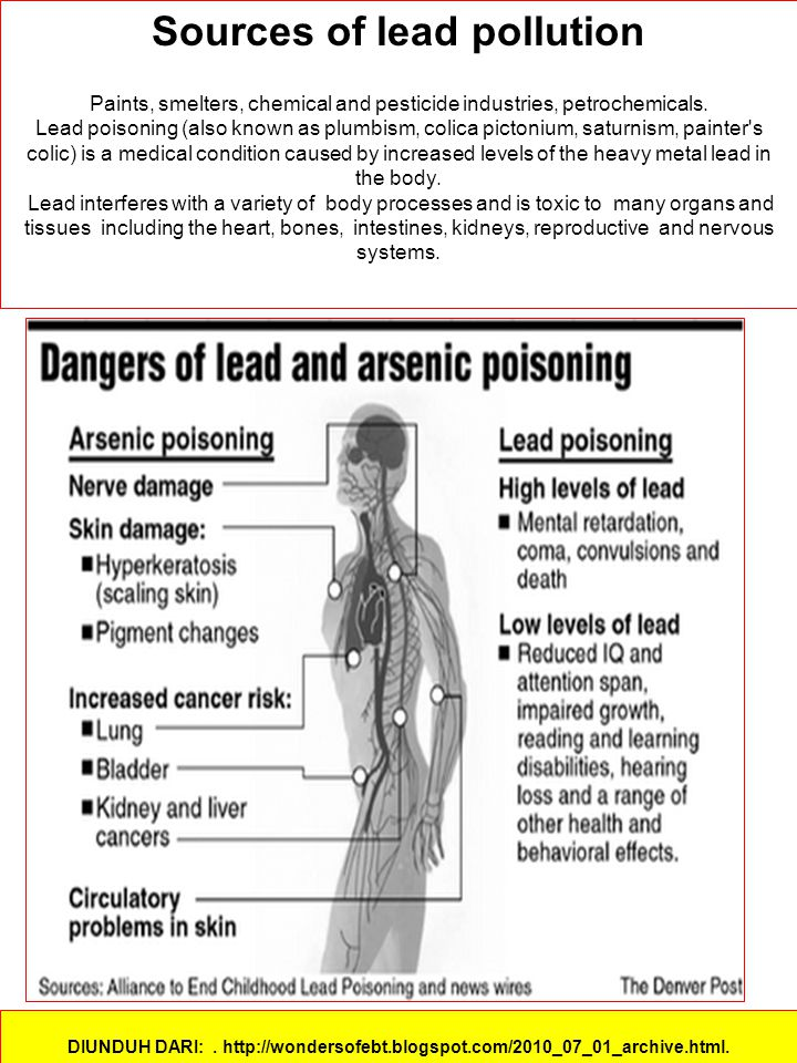Sources of lead pollution Paints, smelters, chemical and pesticide industries, petrochemicals. Lead poisoning (also known as plumbism, colica pictoniu