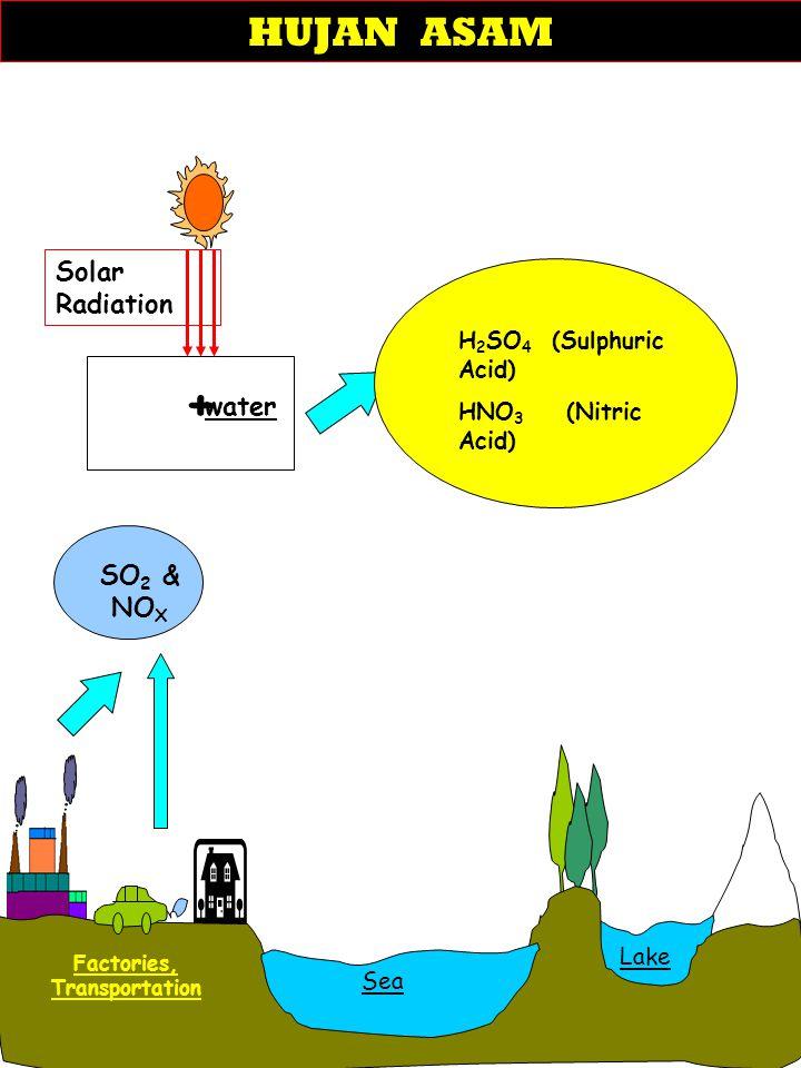 Acid Rain SO 2 & NO X + water SEA Sea Lake Factories, Transportation Solar Radiation H 2 SO 4 (Sulphuric Acid) HNO 3 (Nitric Acid) HUJAN ASAM