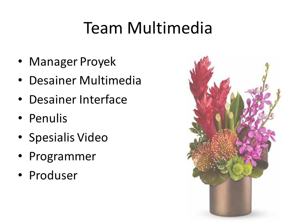 Team Multimedia Manager Proyek Desainer Multimedia Desainer Interface Penulis Spesialis Video Programmer Produser