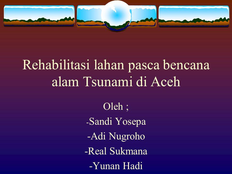 Rehabilitasi lahan pasca bencana alam Tsunami di Aceh Oleh ; -S-Sandi Yosepa -Adi Nugroho -Real Sukmana -Yunan Hadi