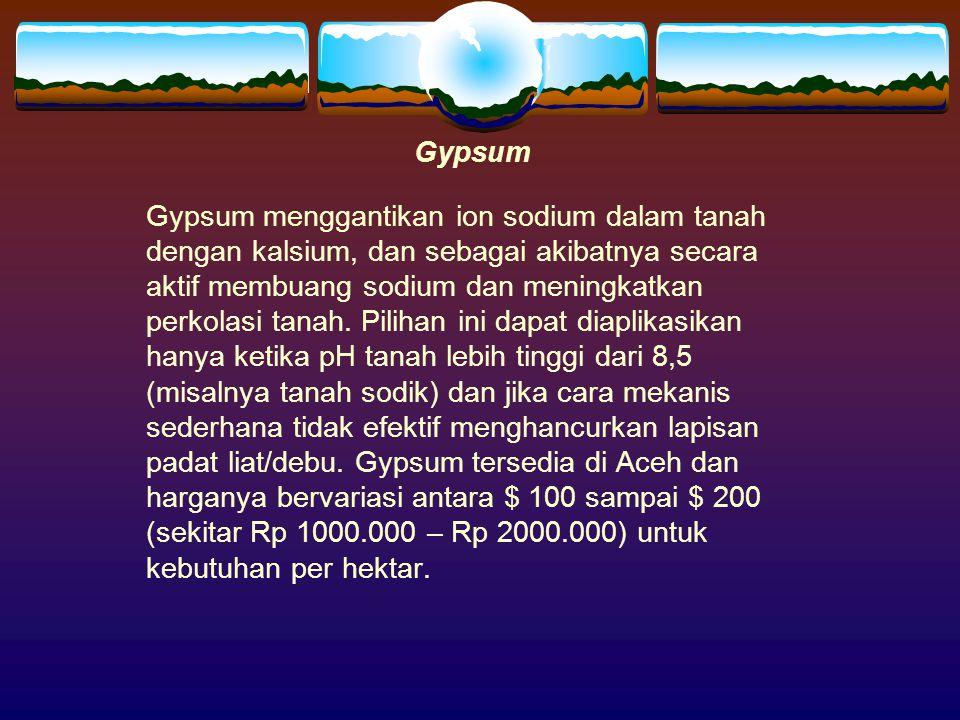 Gypsum Gypsum menggantikan ion sodium dalam tanah dengan kalsium, dan sebagai akibatnya secara aktif membuang sodium dan meningkatkan perkolasi tanah.