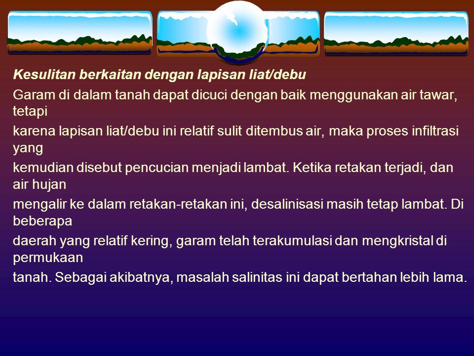 SOLUSI Air bersih adalah satu-satunya unsur penting untuk desalinisasi.