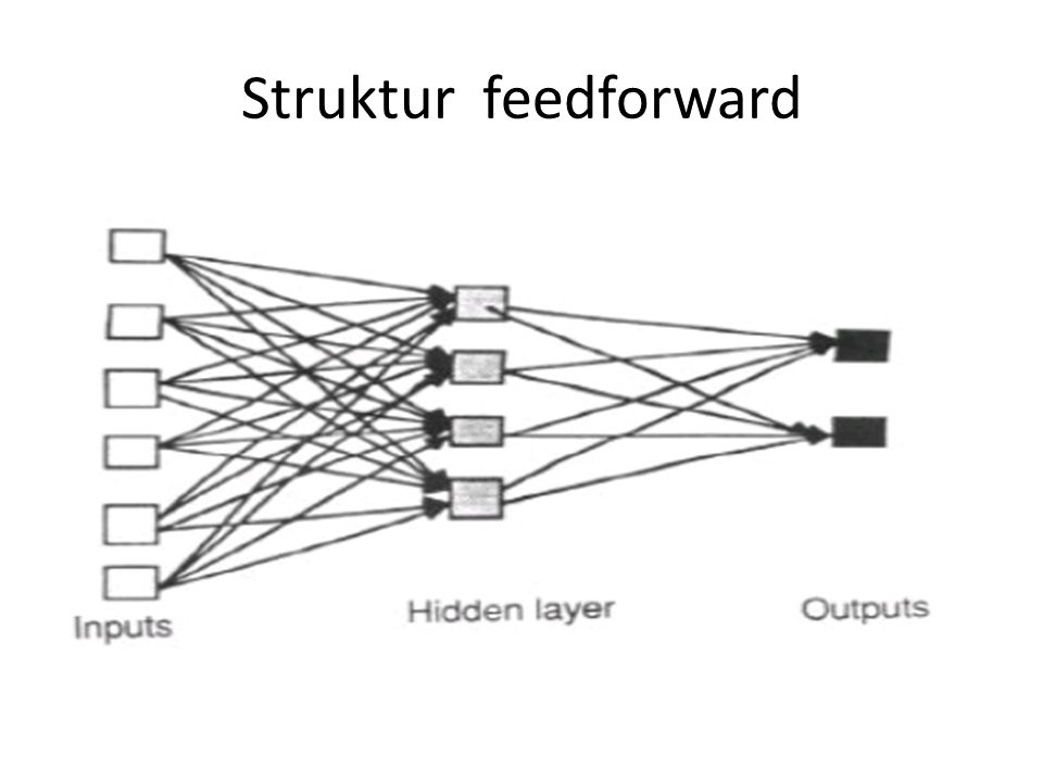 Yang termasuk dalam struktur feed forward : - Single-layer perceptron - Multilayer perceptron - Radial-basis function networks - Higher-order networks - Polynomial learning networks