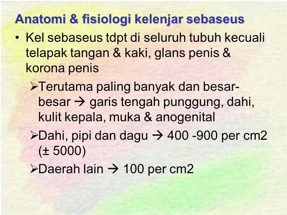 Anatomi & fisiologi kelenjar sebaseus Kel sebaseus tdpt di seluruh tubuh kecuali telapak tangan & kaki, glans penis & korona penis  Terutama paling banyak dan besar- besar  garis tengah punggung, dahi, kulit kepala, muka & anogenital  Dahi, pipi dan dagu  400 -900 per cm2 (± 5000)  Daerah lain  100 per cm2