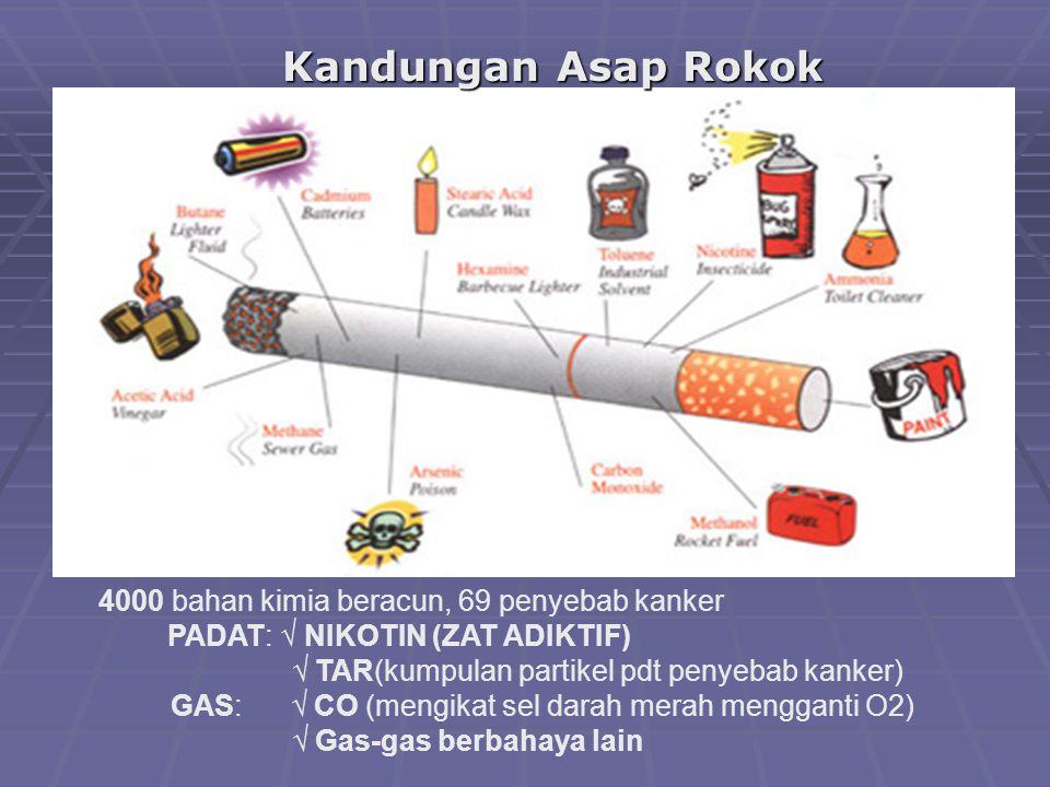 4000 bahan kimia beracun, 69 penyebab kanker PADAT: √ NIKOTIN (ZAT ADIKTIF) √ TAR(kumpulan partikel pdt penyebab kanker) GAS: √ CO (mengikat sel darah