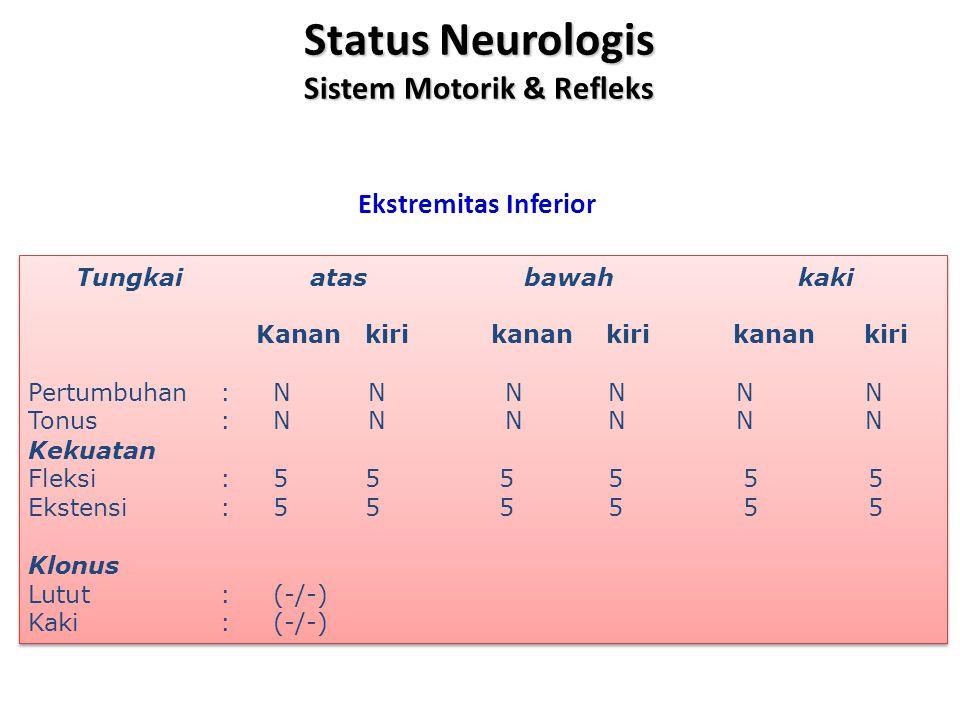 Status Neurologis Sistem Motorik & Refleks Ekstremitas Inferior Tungkai atas bawah kaki Kanan kiri kanan kiri kanan kiri Pertumbuhan : N N N N N N Tonus : N N N N N N Kekuatan Fleksi : 5 5 5 5 5 5 Ekstensi : 5 5 5 5 5 5 Klonus Lutut: (-/-) Kaki : (-/-) Tungkai atas bawah kaki Kanan kiri kanan kiri kanan kiri Pertumbuhan : N N N N N N Tonus : N N N N N N Kekuatan Fleksi : 5 5 5 5 5 5 Ekstensi : 5 5 5 5 5 5 Klonus Lutut: (-/-) Kaki : (-/-)