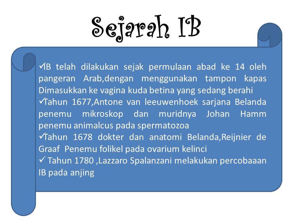 Sejarah IB IB telah dilakukan sejak permulaan abad ke 14 oleh pangeran Arab,dengan menggunakan tampon kapas Dimasukkan ke vagina kuda betina yang sedang berahi Tahun 1677,Antone van leeuwenhoek sarjana Belanda penemu mikroskop dan muridnya Johan Hamm penemu animalcus pada spermatozoa Tahun 1678 dokter dan anatomi Belanda,Reijnier de Graaf Penemu folikel pada ovarium kelinci Tahun 1780,Lazzaro Spalanzani melakukan percobaaan IB pada anjing