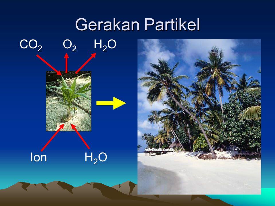 Gerakan Partikel CO 2 O 2 H 2 O Ion H 2 O