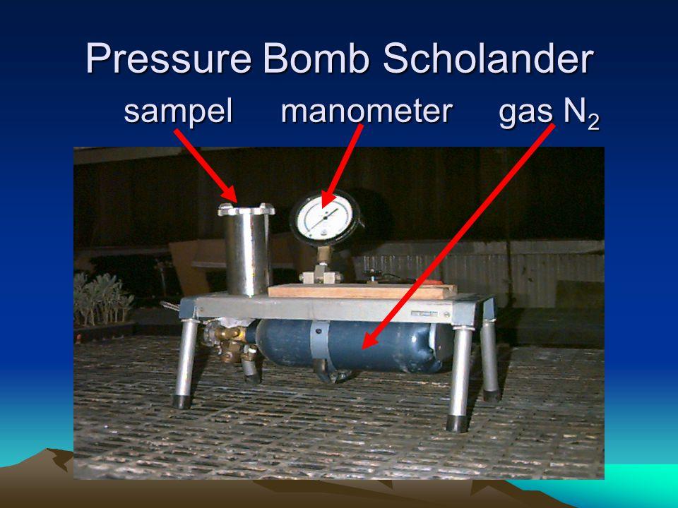 Pressure Bomb Scholander sampel manometer gas N 2