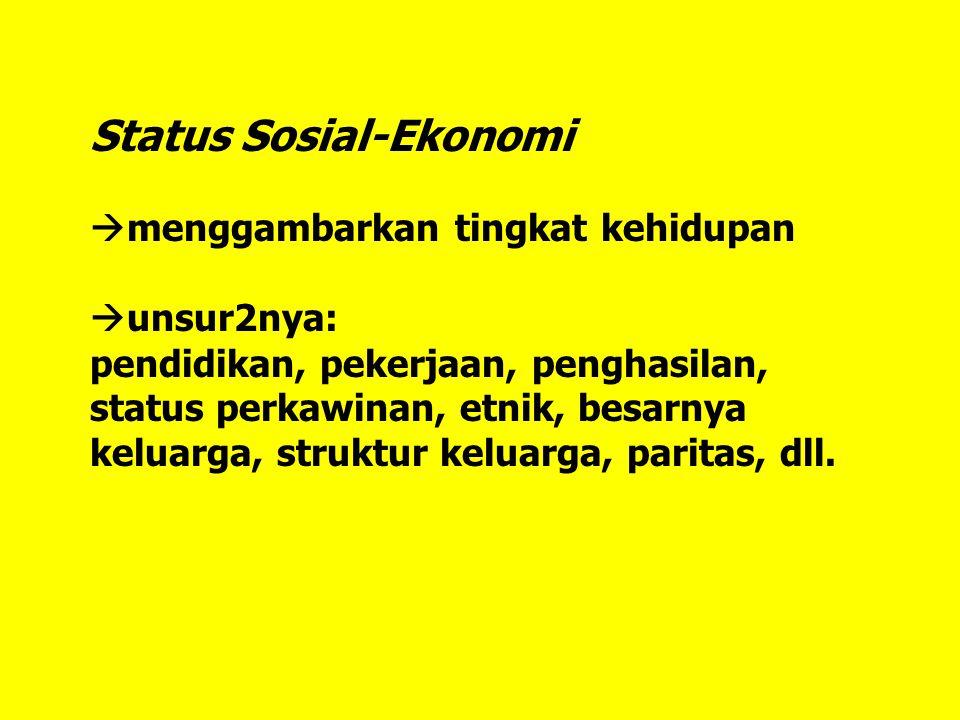 Status Sosial-Ekonomi  menggambarkan tingkat kehidupan  unsur2nya: pendidikan, pekerjaan, penghasilan, status perkawinan, etnik, besarnya keluarga, struktur keluarga, paritas, dll.
