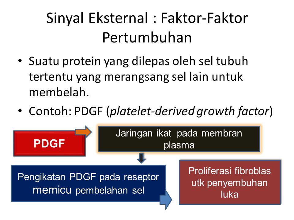 Sinyal Eksternal : Faktor-Faktor Pertumbuhan Suatu protein yang dilepas oleh sel tubuh tertentu yang merangsang sel lain untuk membelah. Contoh: PDGF