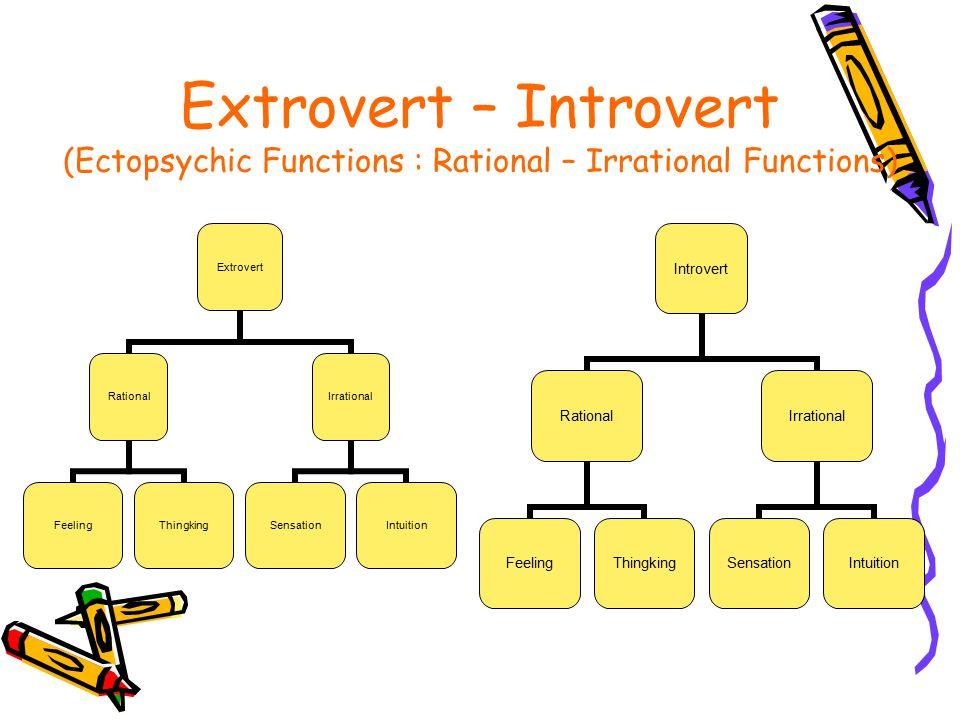 The Extrovert Types Extrovert Thingking Type (Rational) –Objective, rigid, cold.