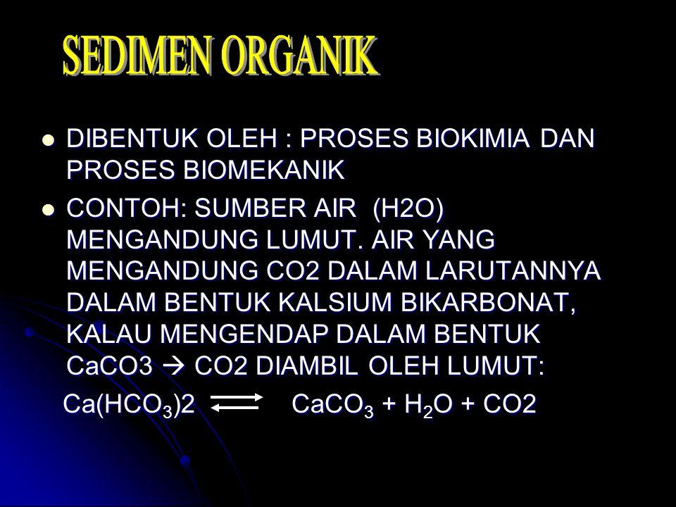 DIBENTUK OLEH : PROSES BIOKIMIA DAN PROSES BIOMEKANIK DIBENTUK OLEH : PROSES BIOKIMIA DAN PROSES BIOMEKANIK CONTOH: SUMBER AIR (H2O) MENGANDUNG LUMUT.