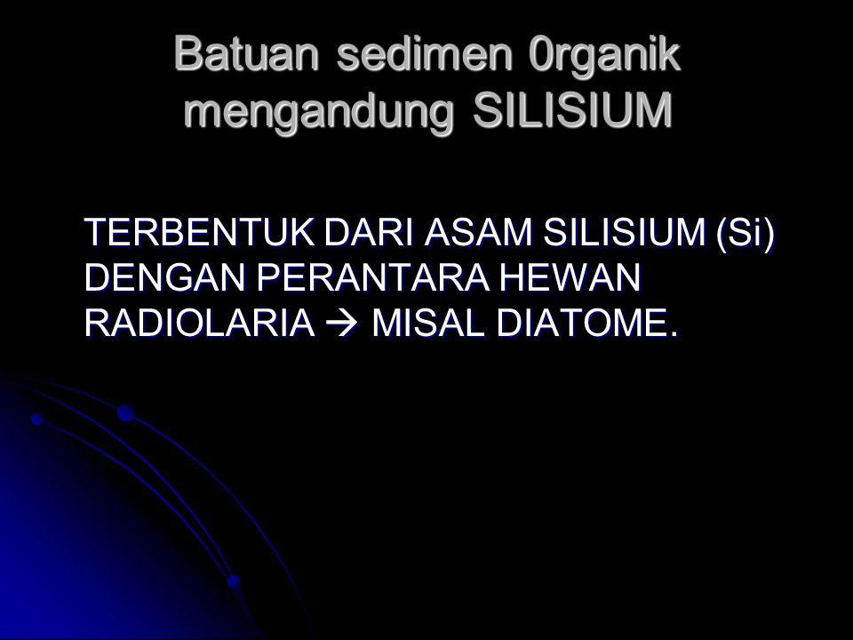Batuan sedimen 0rganik mengandung SILISIUM TERBENTUK DARI ASAM SILISIUM (Si) DENGAN PERANTARA HEWAN RADIOLARIA  MISAL DIATOME.