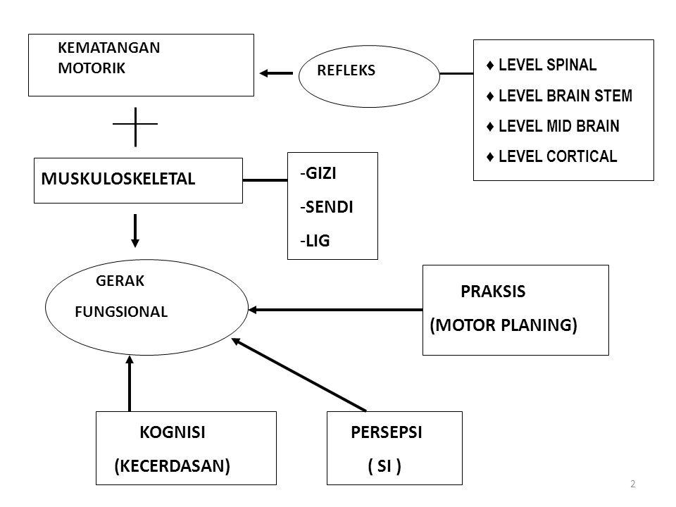 2 KEMATANGAN MOTORIK REFLEKS ♦ LEVEL SPINAL ♦ LEVEL BRAIN STEM ♦ LEVEL MID BRAIN ♦ LEVEL CORTICAL MUSKULOSKELETAL -GIZI -SENDI -LIG GERAK FUNGSIONAL PRAKSIS (MOTOR PLANING) KOGNISI (KECERDASAN) PERSEPSI ( SI )
