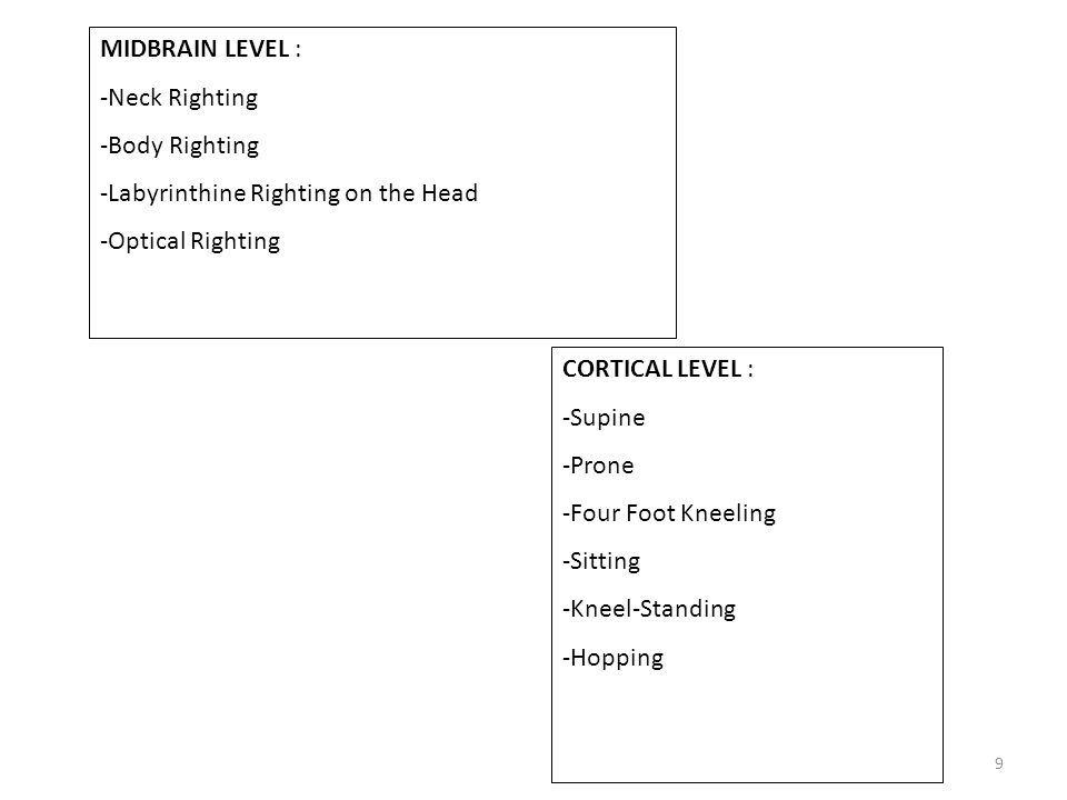 9 MIDBRAIN LEVEL : -Neck Righting -Body Righting -Labyrinthine Righting on the Head -Optical Righting CORTICAL LEVEL : -Supine -Prone -Four Foot Kneeling -Sitting -Kneel-Standing -Hopping