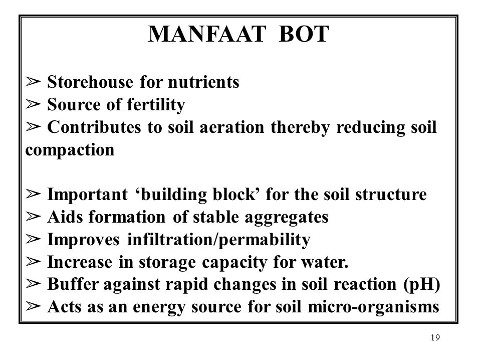 19 MANFAAT BOT ➢ Storehouse for nutrients ➢ Source of fertility ➢ Contributes to soil aeration thereby reducing soil compaction ➢ Important 'building