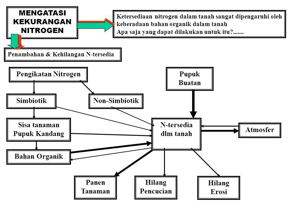 MENGATASI KEKURANGAN NITROGEN Ketersediaan nitrogen dalam tanah sangat dipengaruhi oleh keberadaan bahan organik dalam tanah Apa saja yang dapat dilak