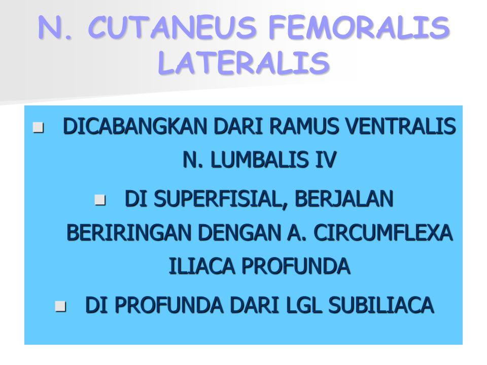 N. CUTANEUS FEMORALIS LATERALIS DICABANGKAN DARI RAMUS VENTRALIS N. LUMBALIS IV DI SUPERFISIAL, BERJALAN BERIRINGAN DENGAN A. CIRCUMFLEXA ILIACA PROFU