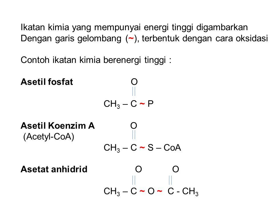Ikatan kimia yang mempunyai energi tinggi digambarkan Dengan garis gelombang (~), terbentuk dengan cara oksidasi Contoh ikatan kimia berenergi tinggi