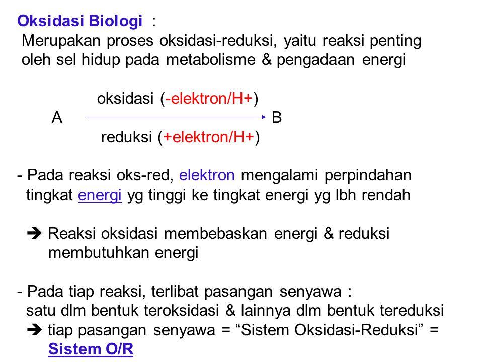 Oksidasi Biologi : Merupakan proses oksidasi-reduksi, yaitu reaksi penting oleh sel hidup pada metabolisme & pengadaan energi oksidasi (-elektron/H+)
