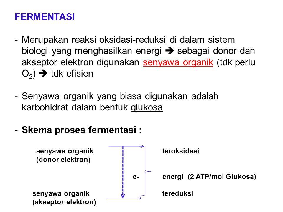 FERMENTASI -Merupakan reaksi oksidasi-reduksi di dalam sistem biologi yang menghasilkan energi  sebagai donor dan akseptor elektron digunakan senyawa