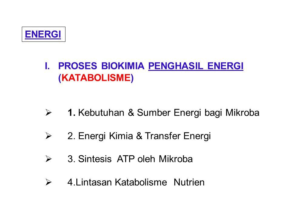 I. PROSES BIOKIMIA PENGHASIL ENERGI (KATABOLISME)  1. Kebutuhan & Sumber Energi bagi Mikroba  2. Energi Kimia & Transfer Energi  3. Sintesis ATP ol