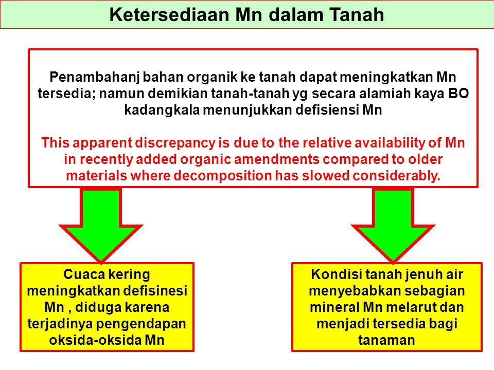 Ketersediaan Mn dalam Tanah Penambahanj bahan organik ke tanah dapat meningkatkan Mn tersedia; namun demikian tanah-tanah yg secara alamiah kaya BO ka