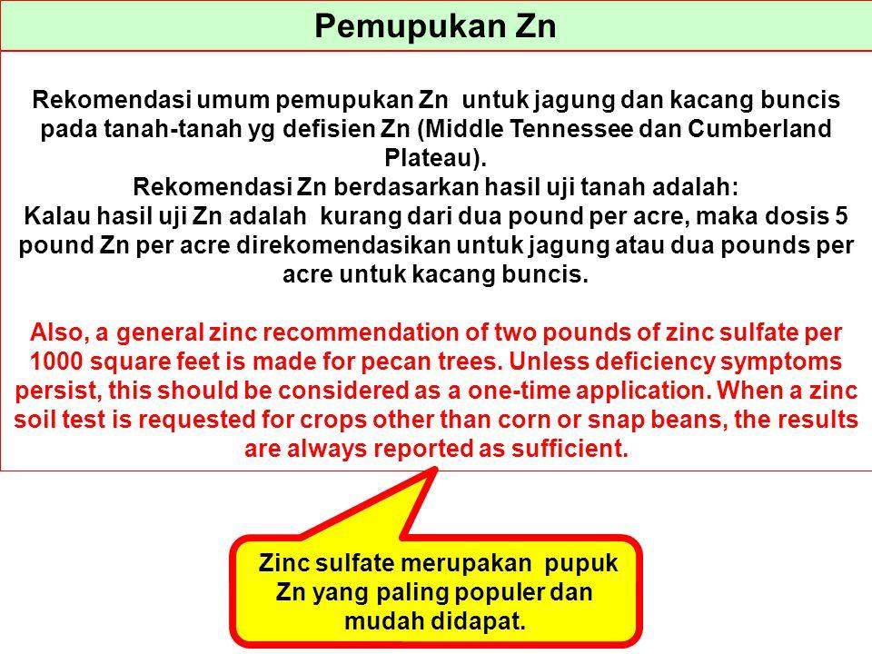 Pemupukan Zn Rekomendasi umum pemupukan Zn untuk jagung dan kacang buncis pada tanah-tanah yg defisien Zn (Middle Tennessee dan Cumberland Plateau). R