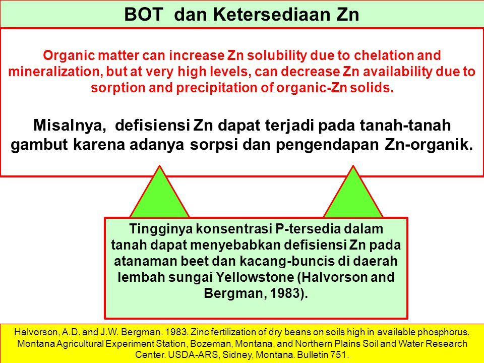 BOT dan Ketersediaan Zn Organic matter can increase Zn solubility due to chelation and mineralization, but at very high levels, can decrease Zn availa